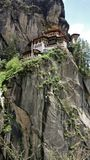 Tigers nest royalty free stock photo