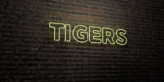TIGERS -Realistic Neon Sign on Brick Wall background - 3D rendered royalty free stock image Royalty Free Stock Photos