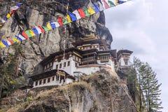 Tigers rede, Bhutan Fotografering för Bildbyråer