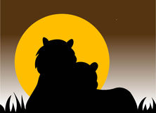 Tigers silhouette Royalty Free Stock Images