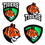 Tigers. Sport team or club logo template. Stock Photos