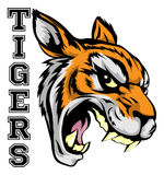 Tigers Sports Mascot. An illustration of a tiger sports mascot head with the word tigers Royalty Free Stock Images
