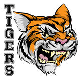 Tigers Sports Mascot. An illustration of a tiger sports mascot head with the word tigers Stock Photos