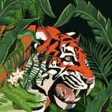 Tigerteckning i djungeln stock illustrationer