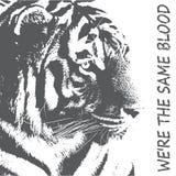 Tigertypographie, T-Shirt Grafiken, Vektoren Schattenbild eines Tigers im Grau Schutz des Konzeptes der wilden Tiere stock abbildung