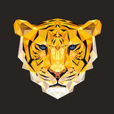 Tigervektorillustration i polygonal stil Tigerframsida för utskrift på t-skjortor stock illustrationer