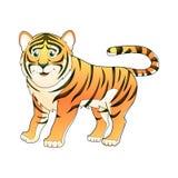 Tigervektorillustration som isoleras på vit bakgrund Royaltyfria Bilder