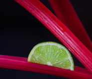 Tiges de tranche et de rhubarbe de chaux Photographie stock