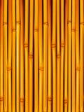 Tiges en bambou image stock
