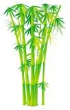 tiges en bambou de groupe illustration stock
