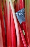 Tiges fraîches de rhubarbe Images stock