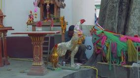 Tiggaren döljer bak statyn av fristaden i Cambodja stock video