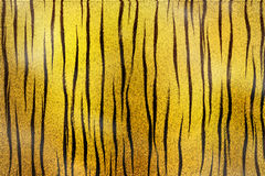 Tigger texture Royalty Free Stock Photo