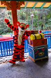 Tigger from Winnie the Pooh. One of the leading characters from Winnie the Pooh posing for pictures in Animal Kingdom, Orando Stock Image