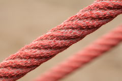 Tight red ropes. Unfocused background Stock Images