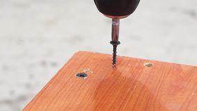 Twists the screw into the Board. Tightening the screw screw with a screwdriver drill into the Board stock video footage