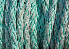 Tightly twisted rope. Background of twisted synthetic rope Royalty Free Stock Photography