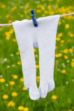 Tights on a clothesline Royalty Free Stock Photo