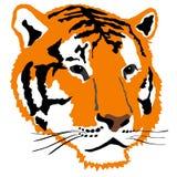 Tigre Illustration Stock