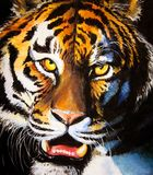 Tigre libre illustration
