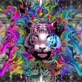 Tigre Imagen de archivo