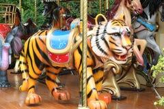 Tigre. fotografia stock