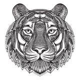 Tigre adornado gráfico dibujado mano ilustración del vector