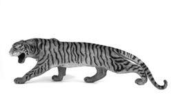 Tigre aislado en el fondo blanco Fotografía de archivo