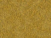 Tigre animal da textura da pele Imagem de Stock