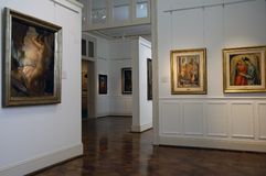 Tigre Art Museum Royalty Free Stock Images
