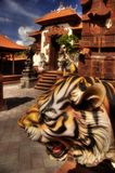 Tigre asiatique Photos libres de droits