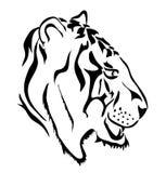 Tigre blanc illustration libre de droits