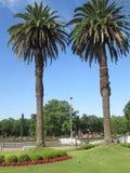 Tigre, Buenos Aires Argentine Rivière, watter, voyage, heure d'été Images libres de droits