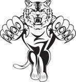 Tigre d'attacco Immagine Stock