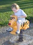 Tigre da equitação Fotos de Stock Royalty Free