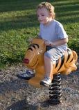Tigre da equitação Imagens de Stock Royalty Free