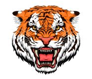 Tigre da raiva ilustração do vetor