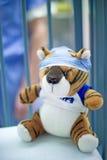 Tigre dans la chirurgie Photo libre de droits