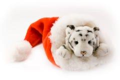 Tigre dans le capuchon de Santa Photographie stock libre de droits