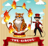 Tigre dans le cercle du feu et le maître d'anneau Image libre de droits