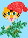Tigre de chéri avec un sapin Photographie stock libre de droits