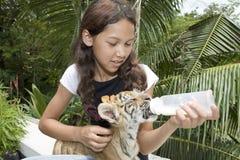 Tigre de chéri d'alimentation des enfants Image libre de droits
