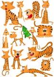 Tigre de chat Images stock