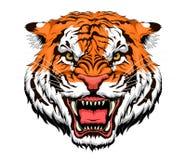 Tigre de colère illustration de vecteur