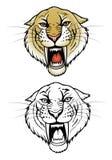 Tigre de dent de sabre Photographie stock