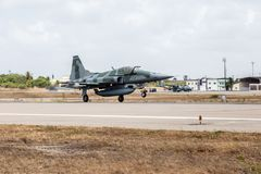 TIGRE de F-5EM II du Cruzex en fonction OUVRIER photo stock