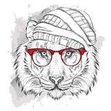 Tigre de la mano en sombrero Ilustración del vector Fotografía de archivo
