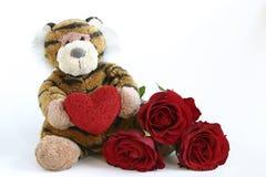 Tigre de las tarjetas del día de San Valentín fotos de archivo