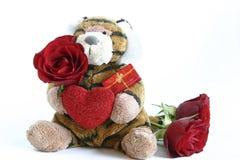 Tigre de las tarjetas del día de San Valentín imagenes de archivo