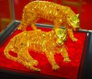 Tigre de oro Foto de archivo